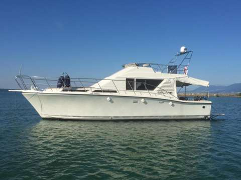 Edership S39 / Flybridge