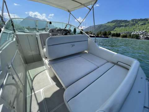 Carver 250 Mid Cabin Express