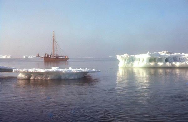 1963 Bylot Island