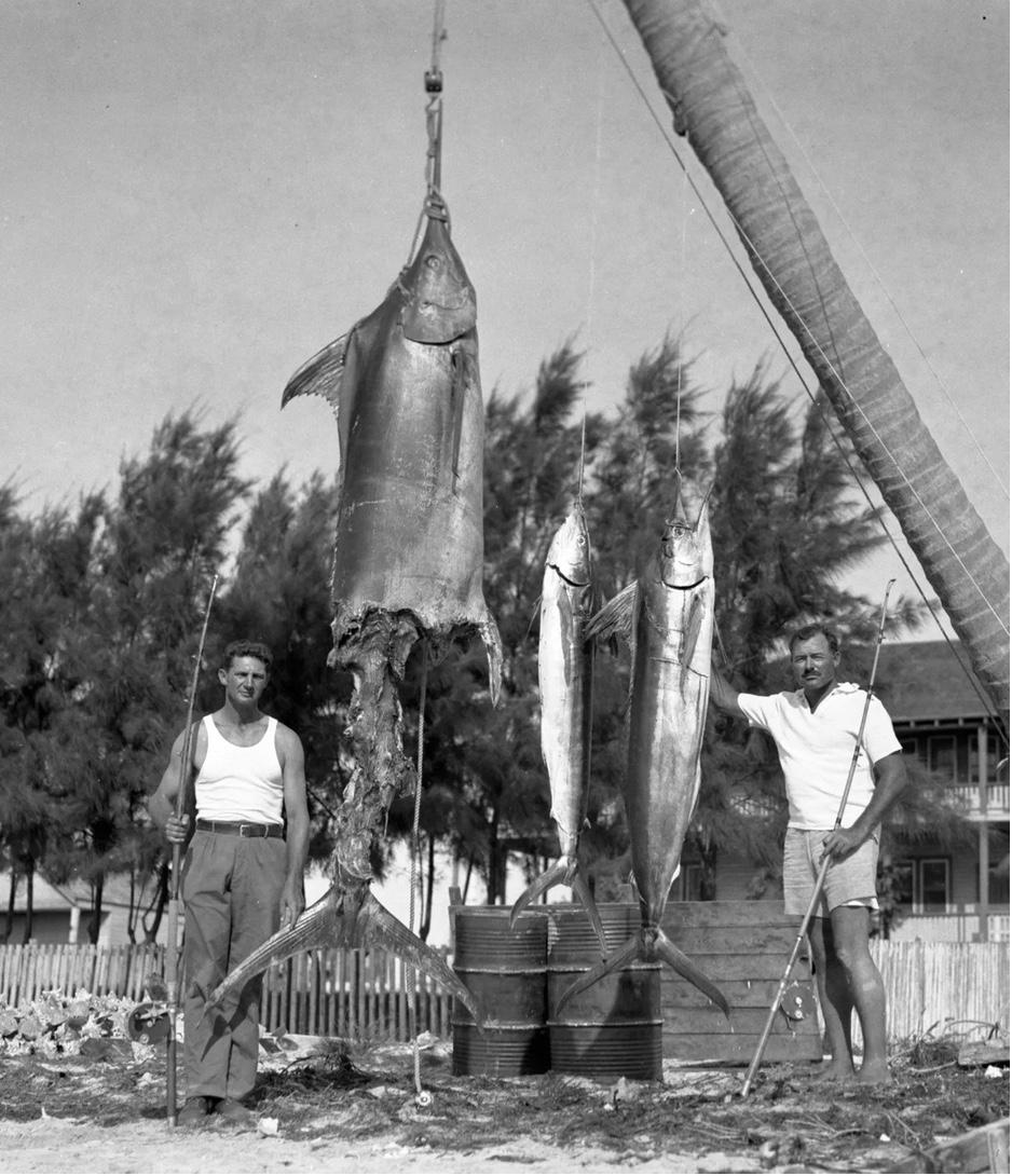Der Fang musste an Bord, bevor Haie ihn gefressen hatten